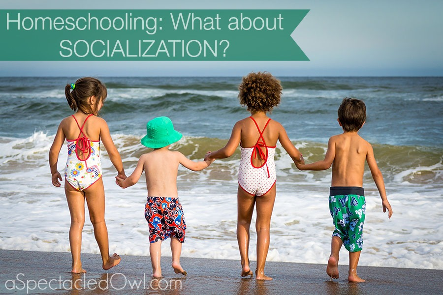 Homeschooling Socialization