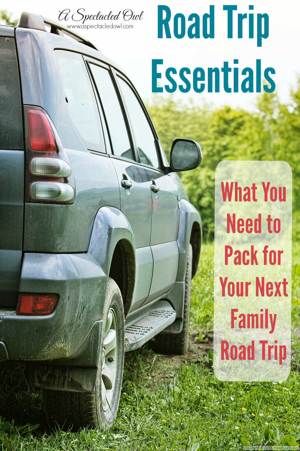 Here is a list of Road Trip Essentials to get you started so you don't forget anything important at home!