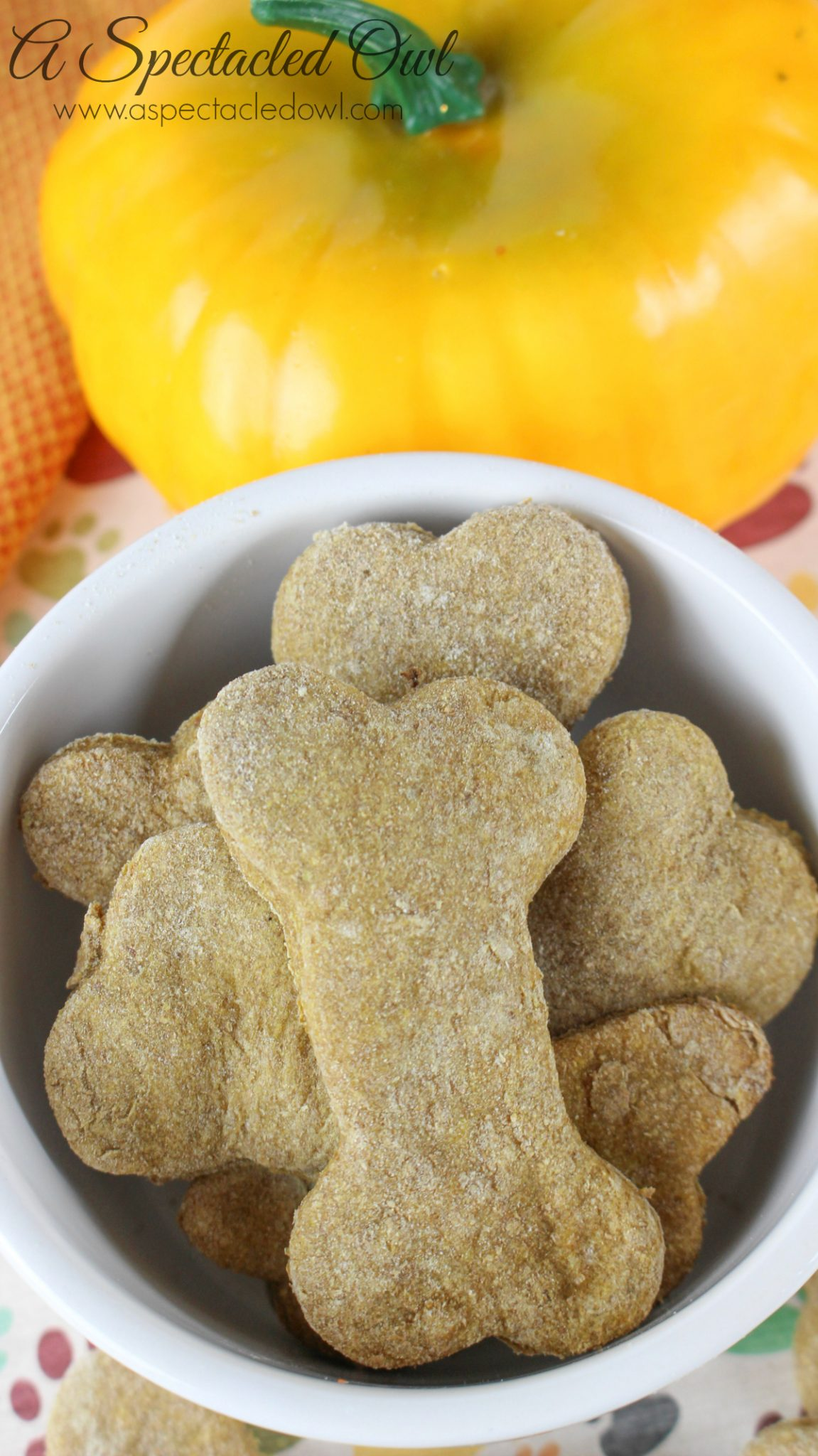 Banana Pumpkin Dog Biscuits